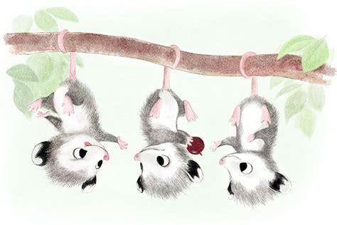 incredibly cute animal illustrations  sydney hanson