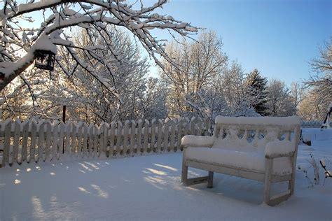 Stuehle Im Schnee by Jak Dbać O Ogr 243 D Zimą Ogrodniczy Porady