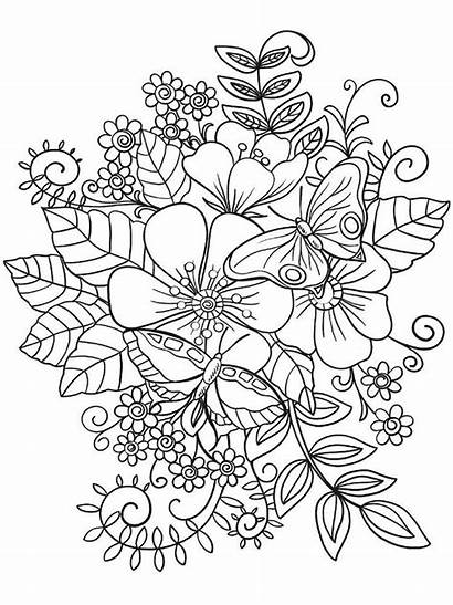 Coloring Flower Flowers Printable Butterfly Shapes Attractive