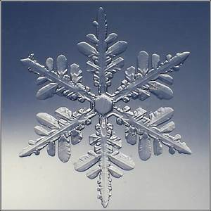 Abored Abroad: I am the Borax, I speak for the snowflakes ...