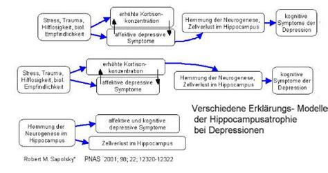Posttraumatic stress disorder - wikipedia