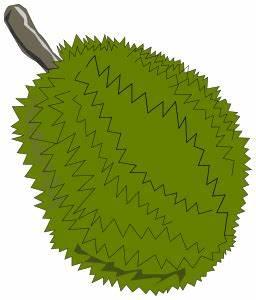 jackfruit clipart - /food/fruit/jack_fruit/jackfruit ...