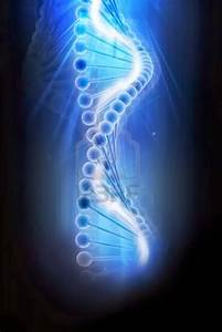 Dna 3d View Hd