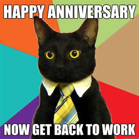 Happy Anniversary Meme - happy anniversary now get back to work business cat quickmeme
