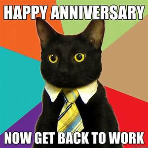 happy anniversary Now get back to work - Business Cat ...