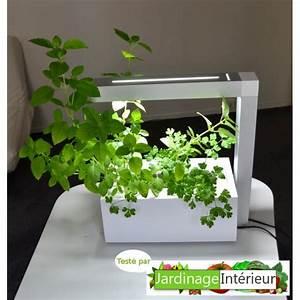 Mini Potager D Intérieur : potager interieur herbie ~ Dailycaller-alerts.com Idées de Décoration