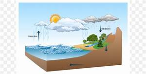Diagram Water Cycle Nature Drawing Illustration  Png