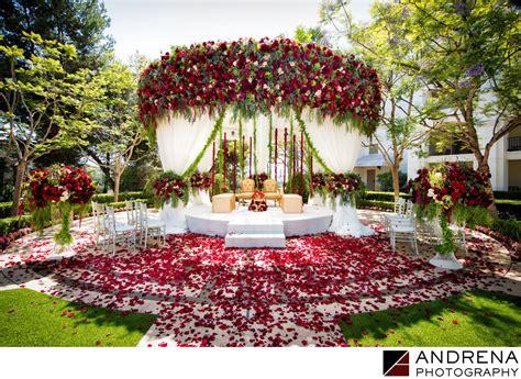 st regis monarch beach pacific lawn wedding square root