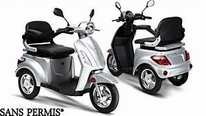 Scooter 3 Roues 125 : scooter 3 roues deltascoot mod le shopy 800 youtube ~ Medecine-chirurgie-esthetiques.com Avis de Voitures