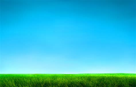 Grass And Sky Wallpaper