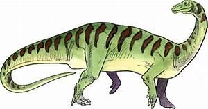 Riojasaurus | www.pixshark.com - Images Galleries With A Bite!