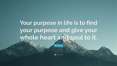 Buddha Purpose Quote Give Soul Heart Wealth