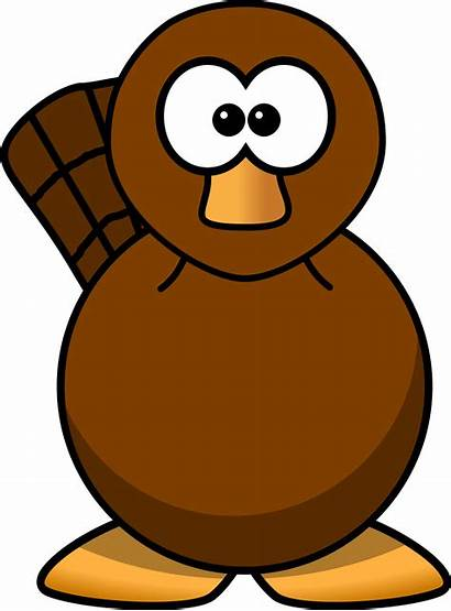 Platypus Cartoon Clipart Face Drawing Cliparts Perry