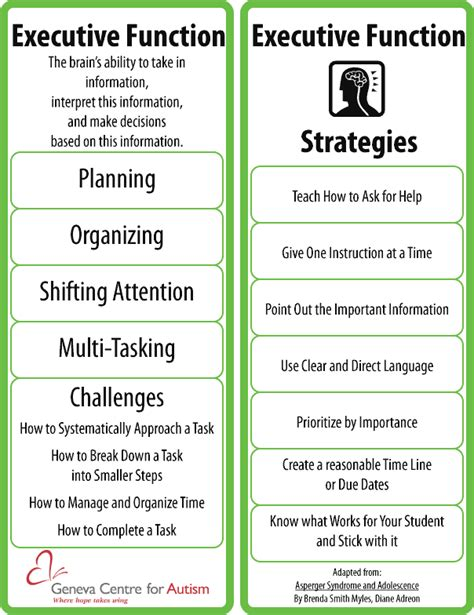 executive function areas and strategies executive