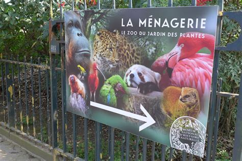 a must visit in spring the jardin des plantes good
