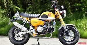 Honda Monkey 2018 : takegawa 181cc honda monkey custom morebikes ~ Medecine-chirurgie-esthetiques.com Avis de Voitures
