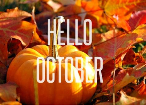 Join The Festivities This October! | Bardonia