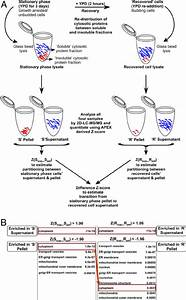 Overview Of Mass Spectrometry Shotgun Proteomics Analysis