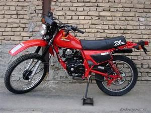 Honda Xl 125 : 1981 honda xl 125 picture 1720324 ~ Medecine-chirurgie-esthetiques.com Avis de Voitures