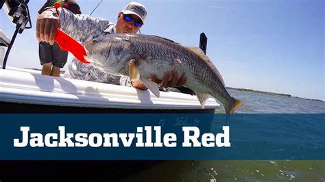mayport fishing florida inlet jacksonville redfish sport tv bull