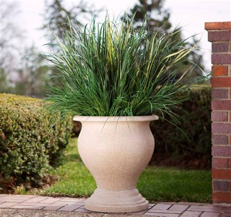 outdoor large plant pots tips for using large outdoor planters front yard landscaping ideas