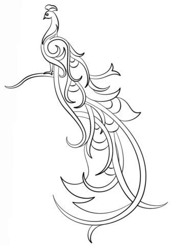 abstract peacock coloring page  printable coloring pages