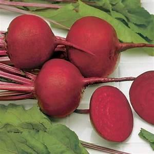 Rote Beete Englisch : rote beete detroit dark red samen bestellen chili chili food ~ Orissabook.com Haus und Dekorationen