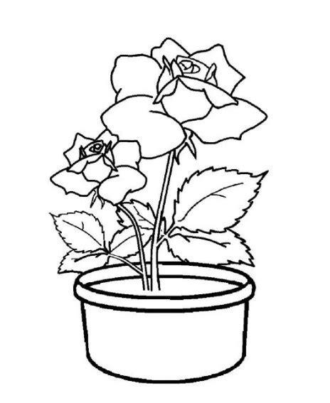 gambar pot bunga untuk mewarnai gambar mewarnai bunga