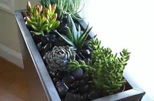 Jardin Miniature Interieur by Un Mini Jardin D Int 233 Rieur Tutos Et Conseils