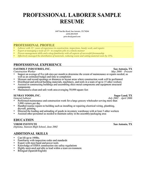 Professional Profile Resume Exles by Professional Profile For Resume Template