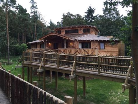 Treehouse-picture Of Center Parcs Elveden Forest