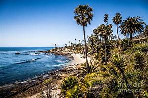 Picture Of Orange County California Photograph by Paul Velgos