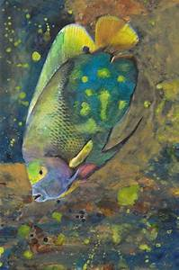 Watercolors, Tropical fish and Tropical on Pinterest