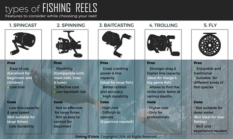 types  fishing reels  guide  techniques differences
