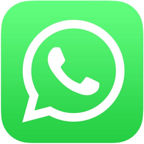 whatsapp color archivo whatsapp logo color vertical svg la