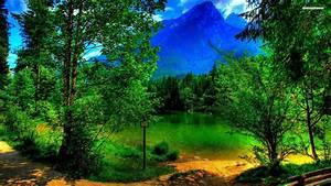 Green, Hd, Wallpaper, Clear, Green, River, Forest, Mountain, Peaks