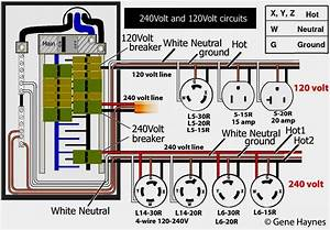 Diagram  50 Amp Twist Lock Plug Wiring Diagram Sample