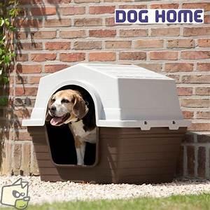 Niche Petit Chien : niche chien pas cher ~ Melissatoandfro.com Idées de Décoration
