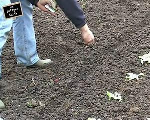 Culture Des Radis : semis de radis et salades sous tunnel youtube ~ Melissatoandfro.com Idées de Décoration