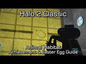Halo MCC: Halo 2 - Animal Habitat Achievement & Easter Egg ...