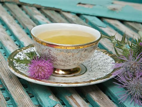 Milk Thistle Facts And Health Benefits