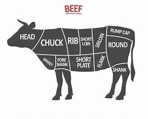 Vintage Diagram Guide For Cutting Meat Stock Vector