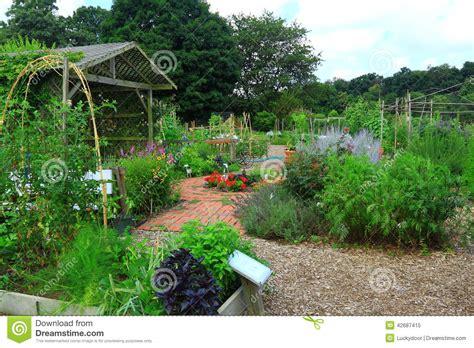 vegetable flower garden stock photo image 42687415