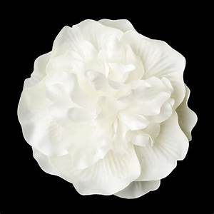 Bridal Flower Hair Clip In Ivory Or White