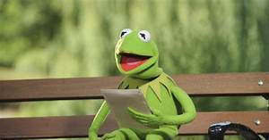 Kermit The Frog U0026 39 S Letter To His Younger Tadpole Self