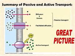 Passive Vs Active Tran...