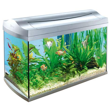 xing fu be careful where you place your aquarium