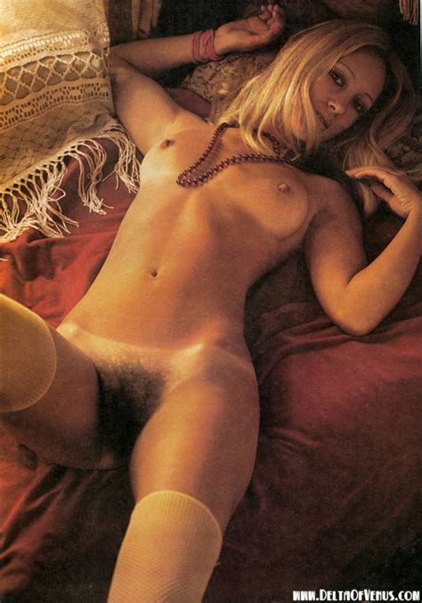 Retronudecenterfoldhairypussy In Gallery Assorted Vintage Erotica From The S Through