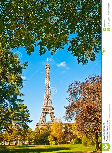 eiffel tower surrounded  trees royalty  stock images