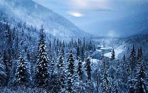 Landscape, Alaska, Snow, Nature, Mountain, Forest, Winter